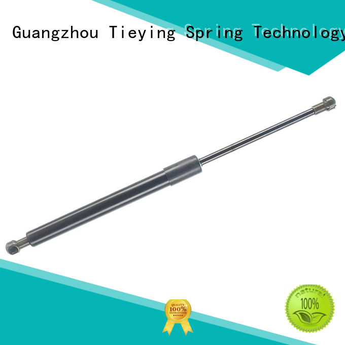 Tieying Spring low cost Tailgate Assist bulk production for boat